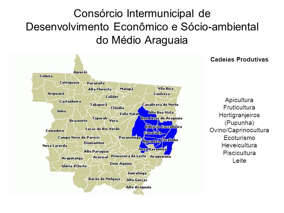 Consórcio Intermunicipal de Desenvolvimento Econômico e Sócio-ambiental do Médio Araguaia
