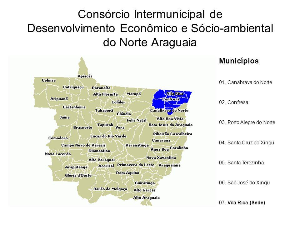 Consórcio Intermunicipal de Desenvolvimento Econômico e Sócio-ambiental do Norte Araguaia