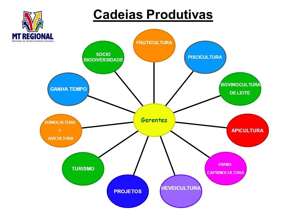Cadeias Produtivas Gerentes HEVEICULTURA PROJETOS GANHA TEMPO