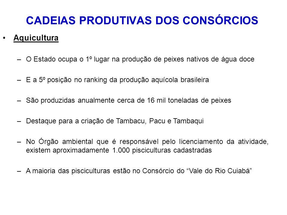 CADEIAS PRODUTIVAS DOS CONSÓRCIOS