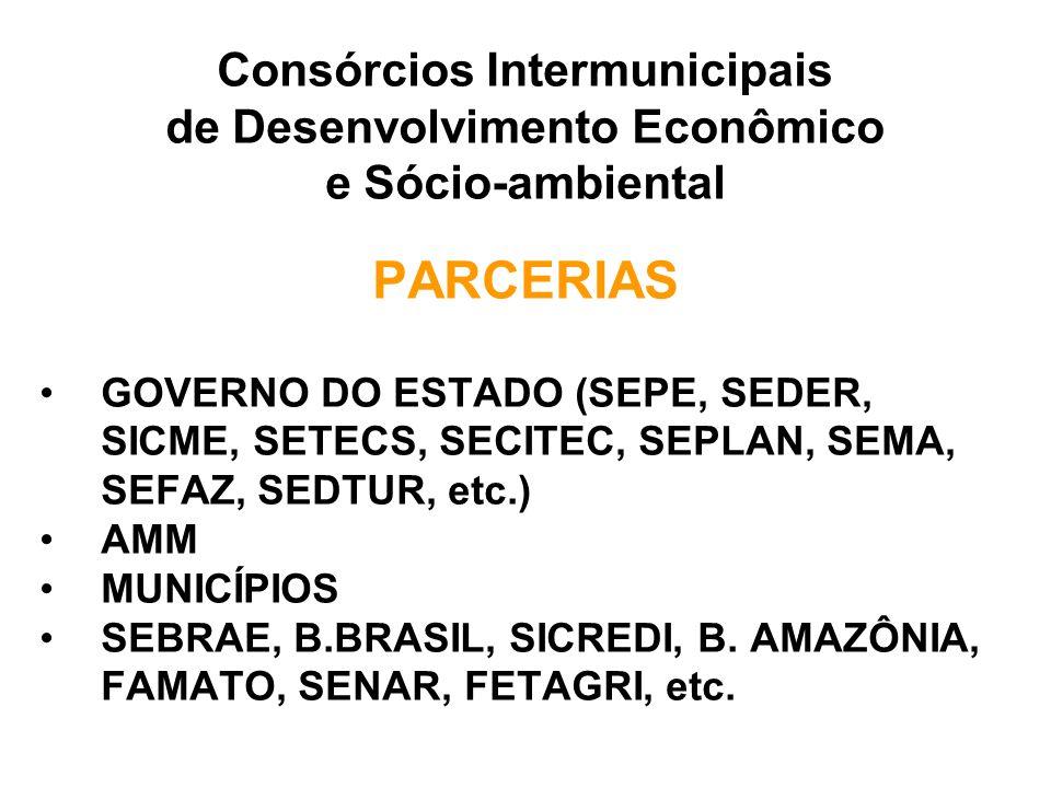 Consórcios Intermunicipais de Desenvolvimento Econômico e Sócio-ambiental