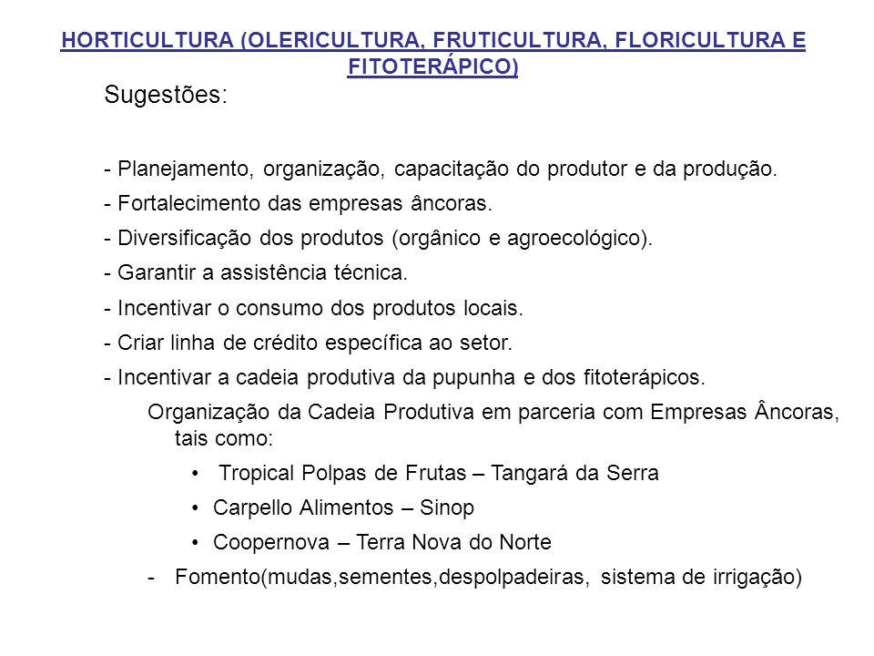 HORTICULTURA (OLERICULTURA, FRUTICULTURA, FLORICULTURA E FITOTERÁPICO)