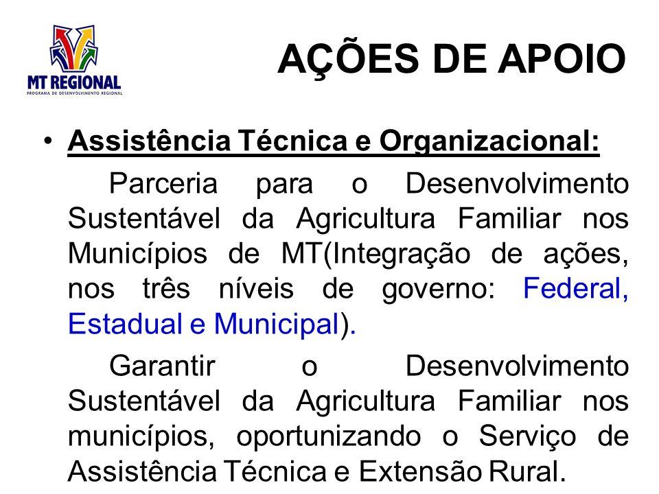 AÇÕES DE APOIO Assistência Técnica e Organizacional:
