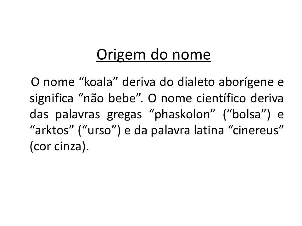 Origem do nome