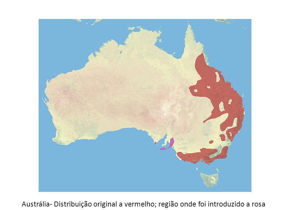 Austrália- Distribuição original a vermelho; região onde foi introduzido a rosa