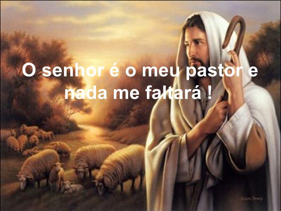 O senhor é o meu pastor e nada me faltará !