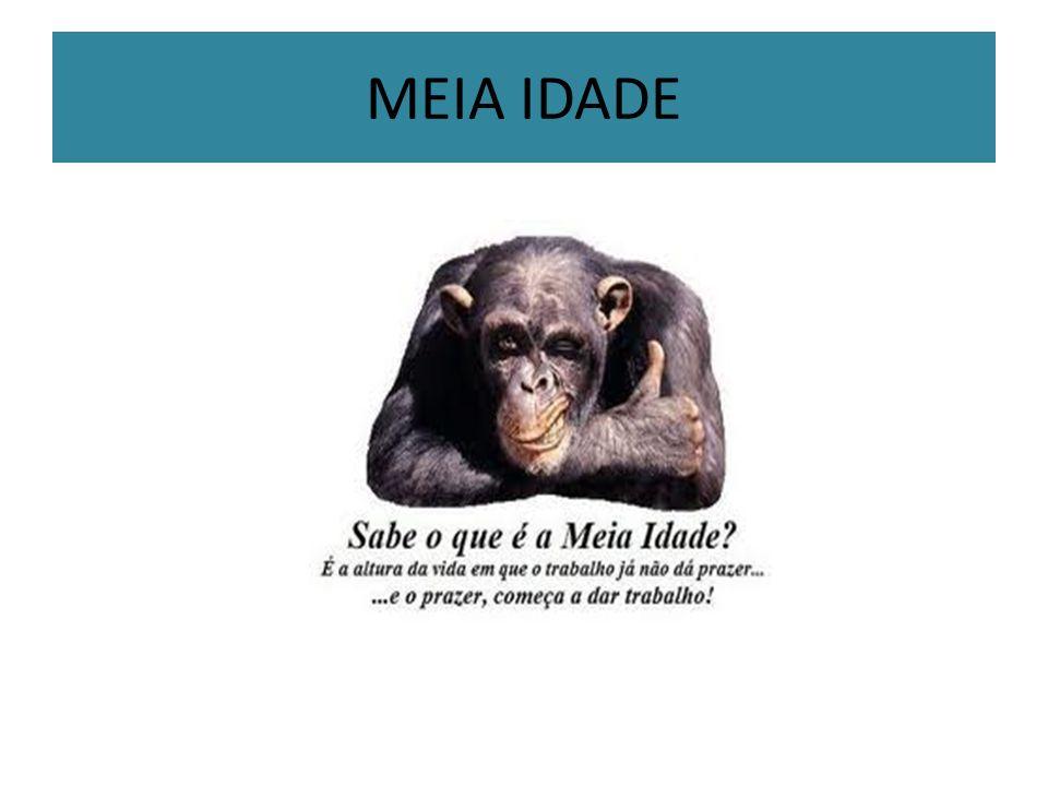 MEIA IDADE