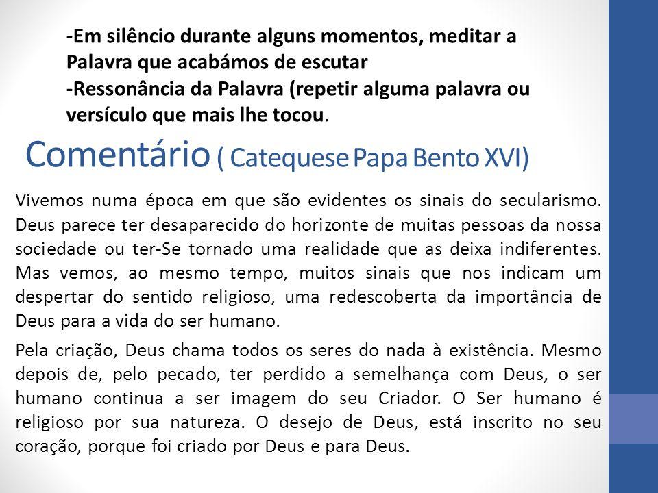 Comentário ( Catequese Papa Bento XVI)