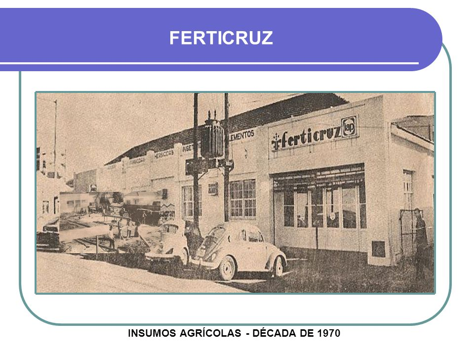 INSUMOS AGRÍCOLAS - DÉCADA DE 1970
