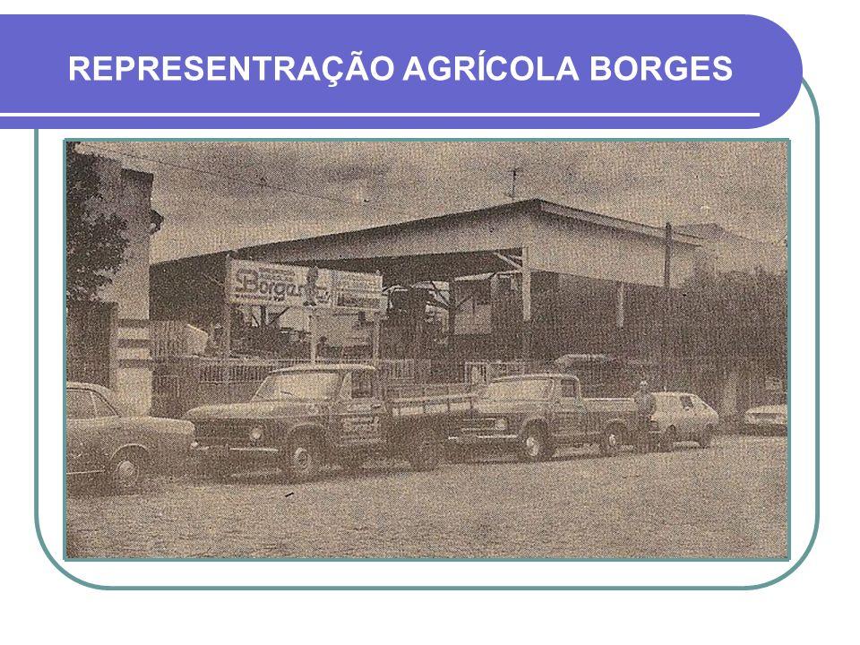 REPRESENTRAÇÃO AGRÍCOLA BORGES