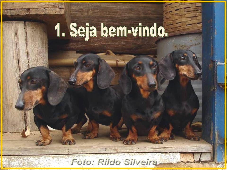 Foto: Rildo Silveira 1. Seja bem-vindo.