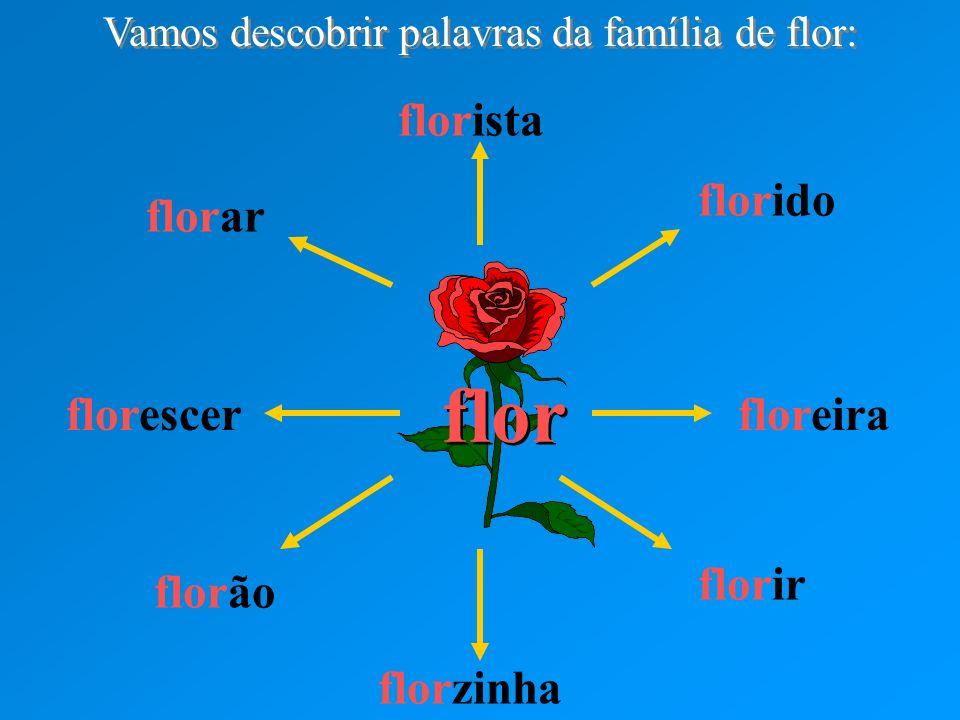 Vamos descobrir palavras da família de flor: