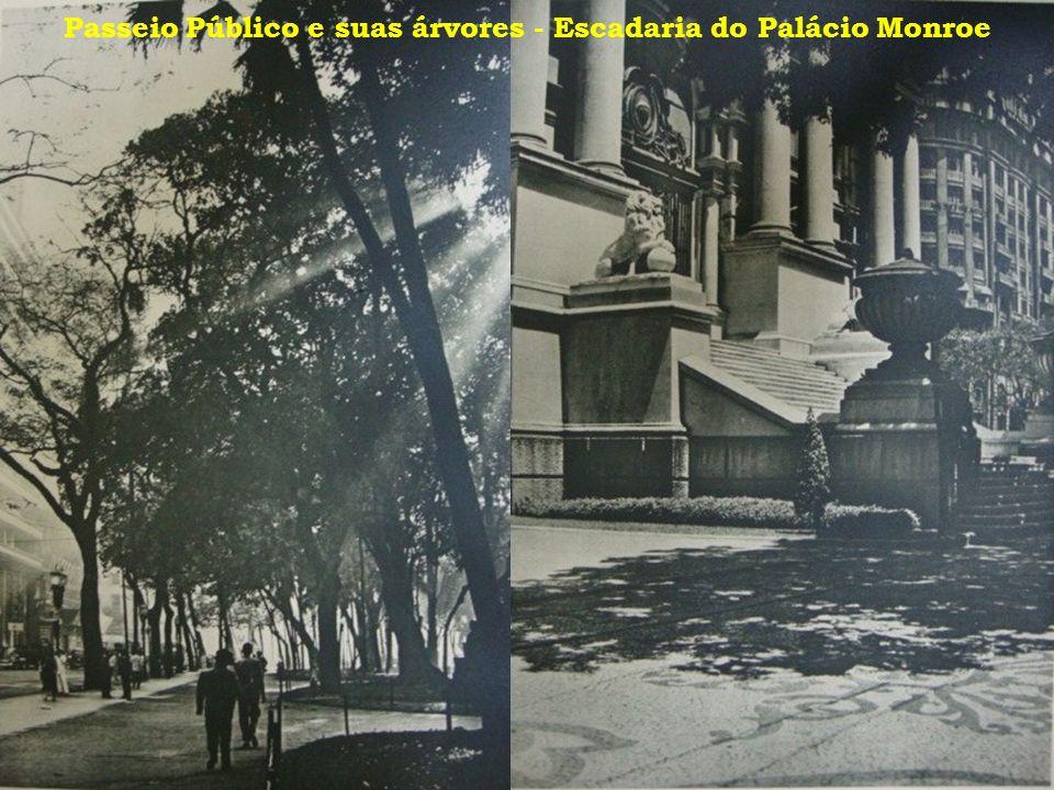 Passeio Público e suas árvores - Escadaria do Palácio Monroe