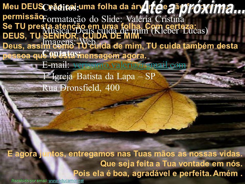 Até a próxima... Créditos: Formatação do Slide: Valéria Cristina