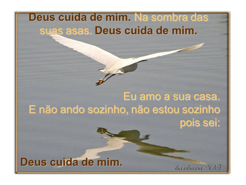 Deus cuida de mim. Na sombra das suas asas. Deus cuida de mim.