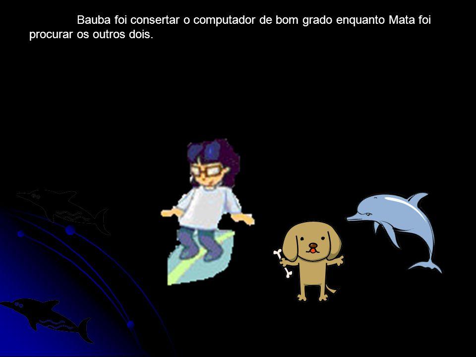 Bauba foi consertar o computador de bom grado enquanto Mata foi procurar os outros dois.