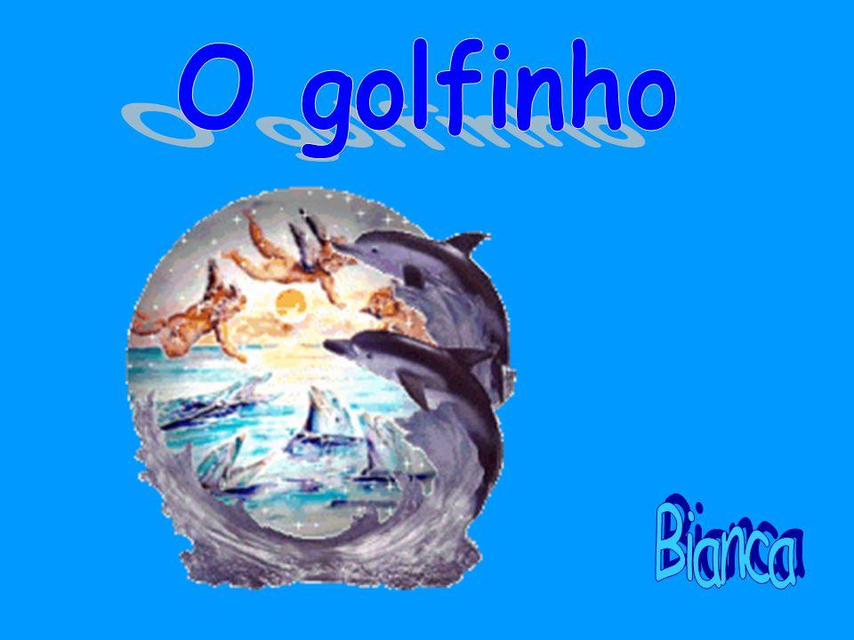 O golfinho ' Bianca