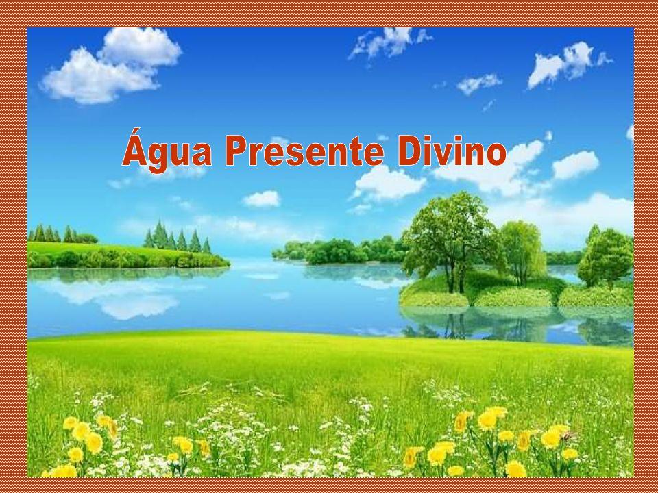 Água Presente Divino