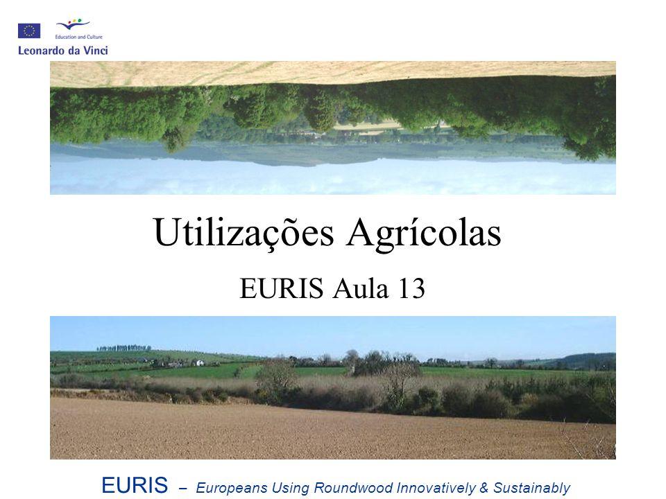 Utilizações Agrícolas