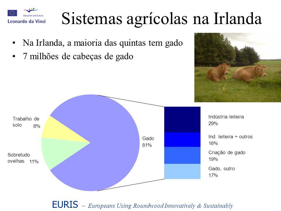 Sistemas agrícolas na Irlanda