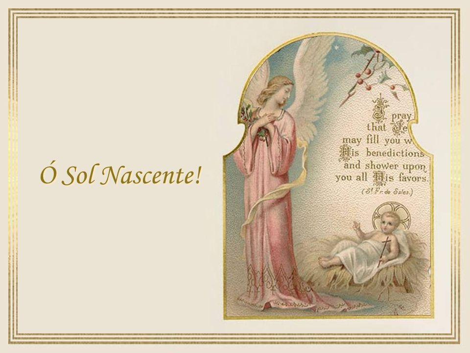Ó Sol Nascente!