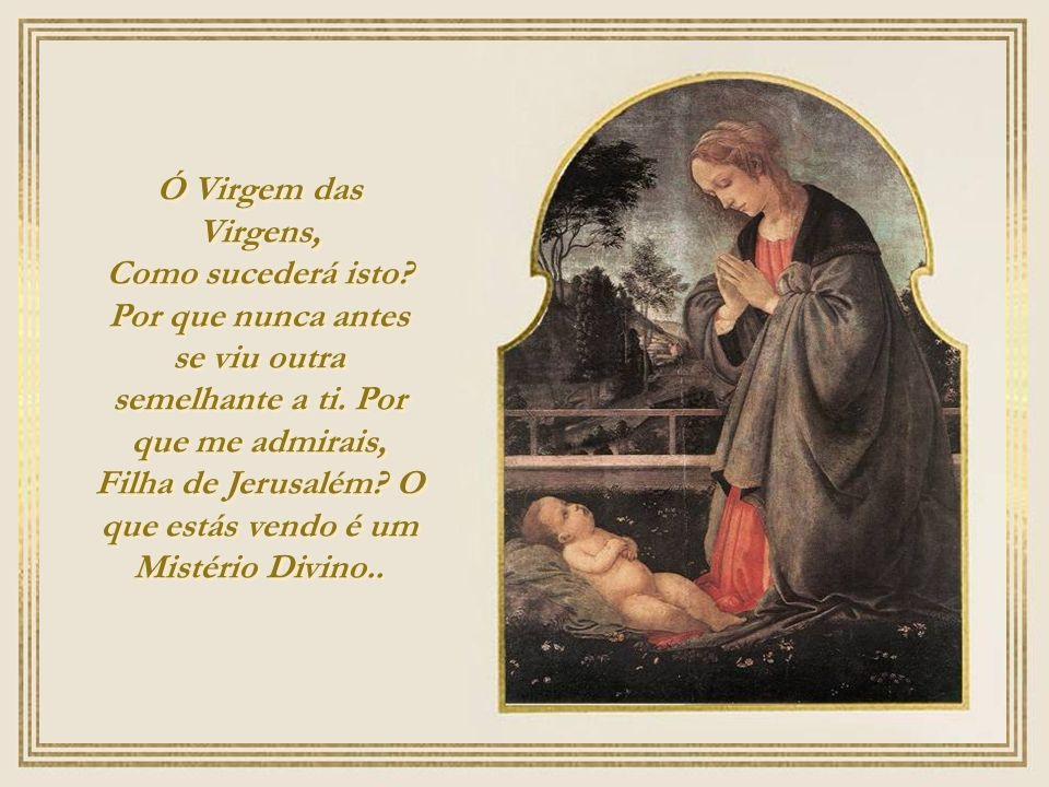 Ó Virgem das Virgens,