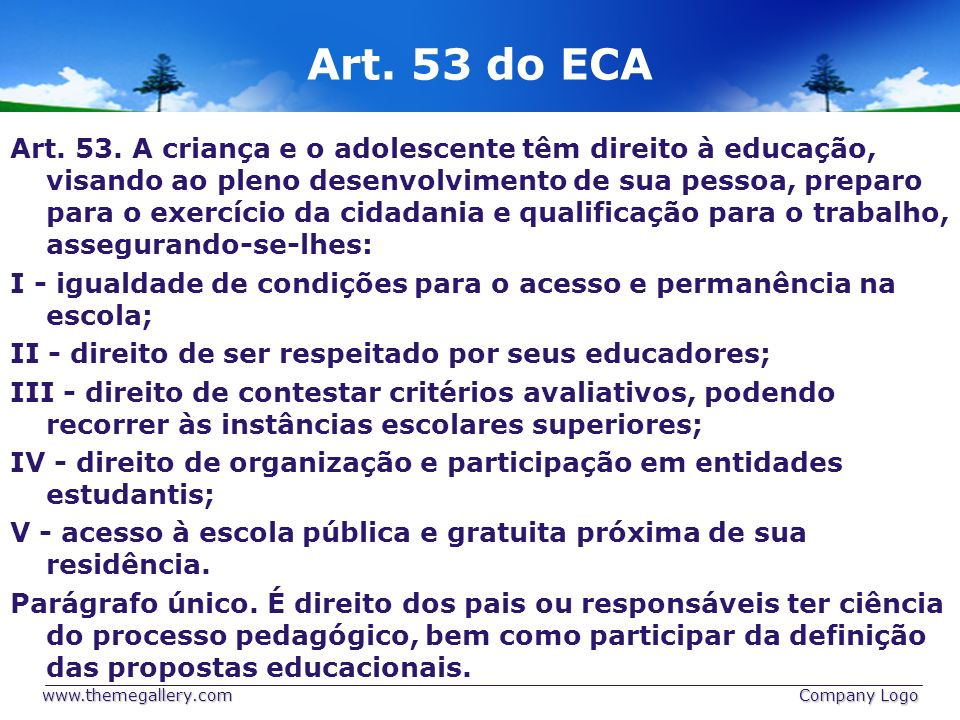 Art. 53 do ECA