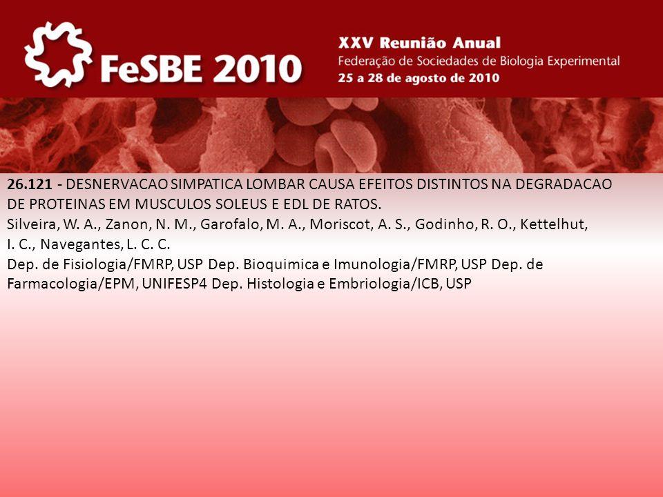 26.121 - DESNERVACAO SIMPATICA LOMBAR CAUSA EFEITOS DISTINTOS NA DEGRADACAO
