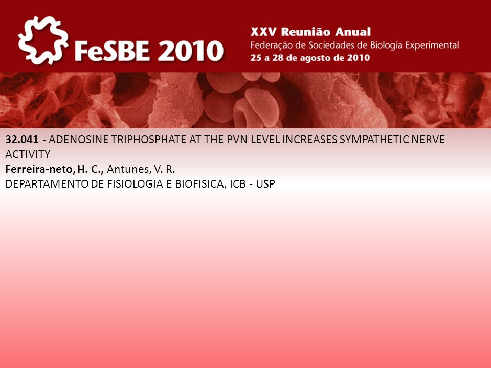 32.041 - ADENOSINE TRIPHOSPHATE AT THE PVN LEVEL INCREASES SYMPATHETIC NERVE ACTIVITY