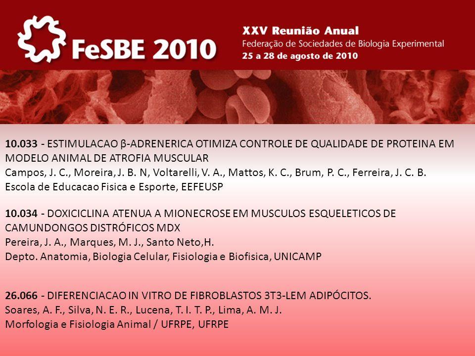 10.033 - ESTIMULACAO β-ADRENERICA OTIMIZA CONTROLE DE QUALIDADE DE PROTEINA EM MODELO ANIMAL DE ATROFIA MUSCULAR