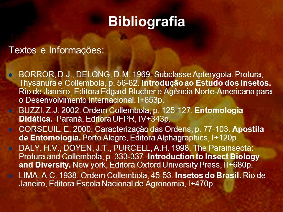 Bibliografia Textos e Informações: