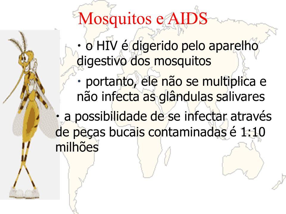 Mosquitos e AIDS o HIV é digerido pelo aparelho digestivo dos mosquitos. portanto, ele não se multiplica e não infecta as glândulas salivares.