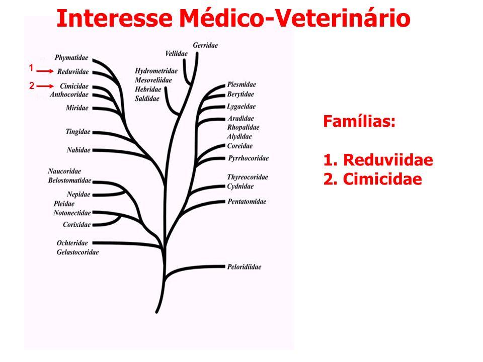 Interesse Médico-Veterinário