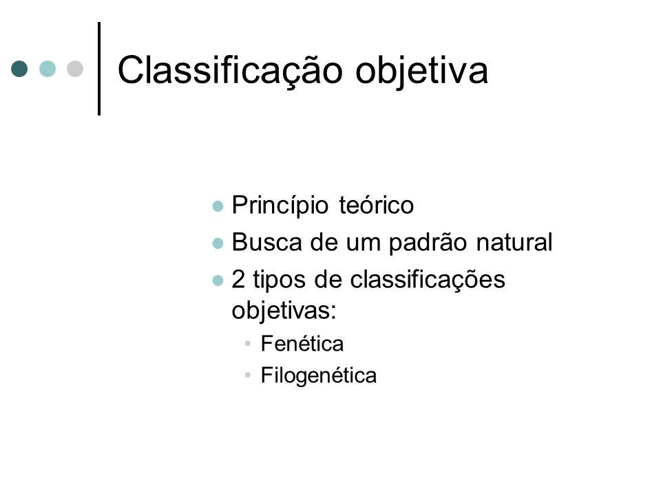 Classificação objetiva