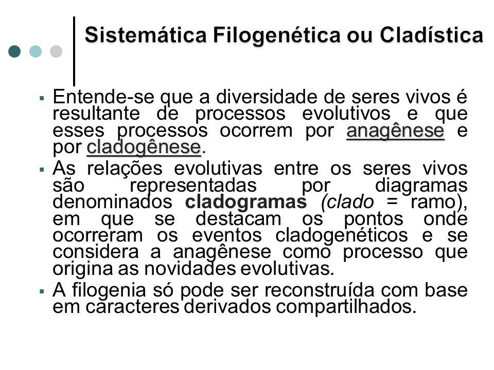 Sistemática Filogenética ou Cladística
