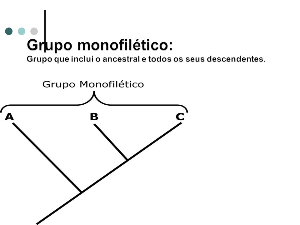 Grupo monofilético: Grupo que inclui o ancestral e todos os seus descendentes.