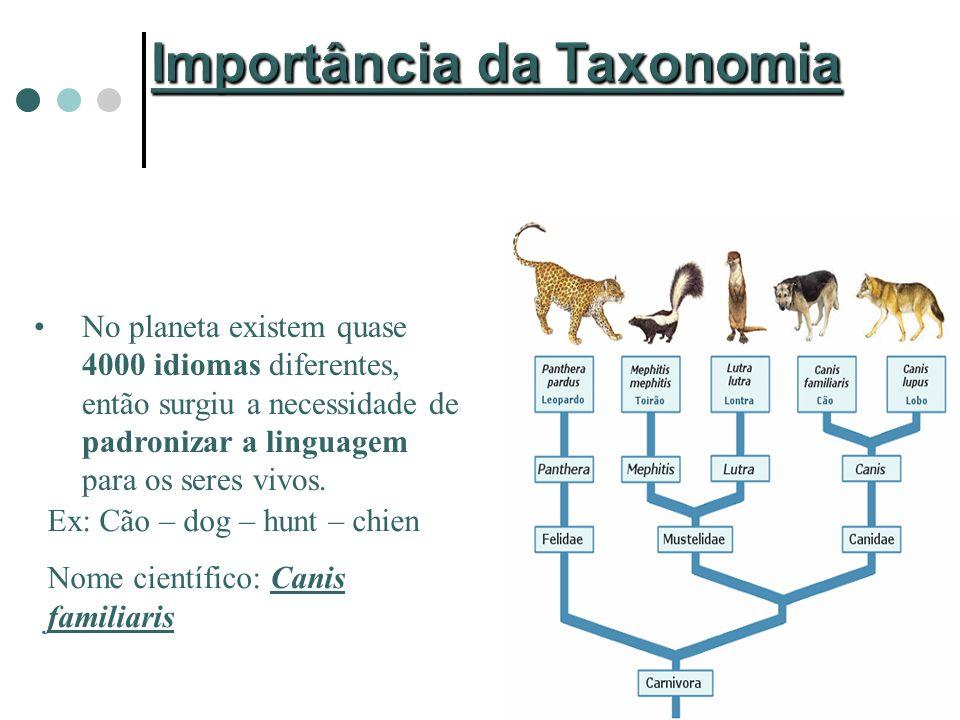 Importância da Taxonomia