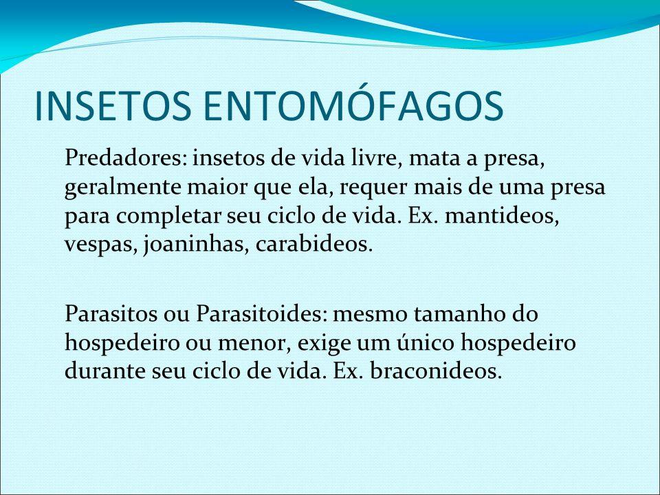 INSETOS ENTOMÓFAGOS