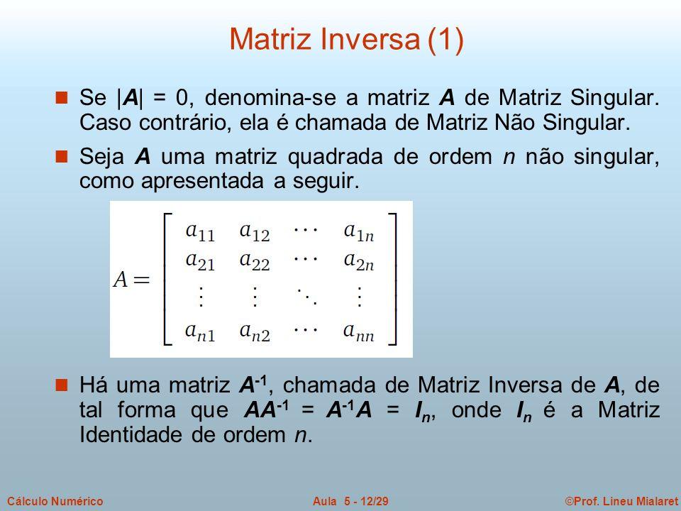 Matriz Inversa (1) Se |A| = 0, denomina-se a matriz A de Matriz Singular. Caso contrário, ela é chamada de Matriz Não Singular.