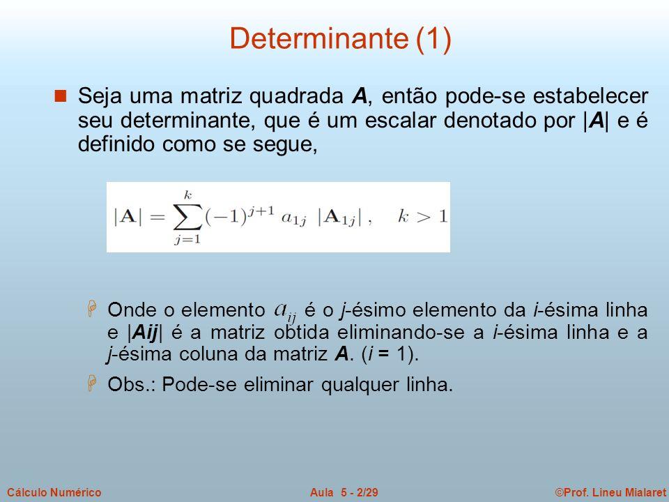 Determinante (1)