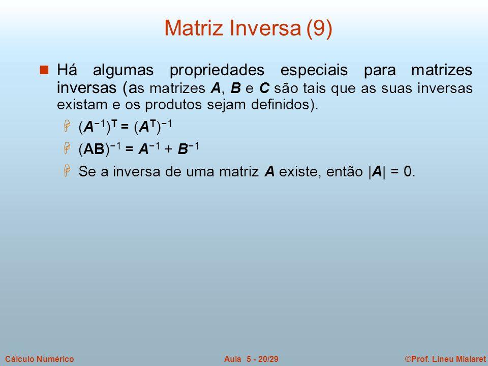 Matriz Inversa (9)