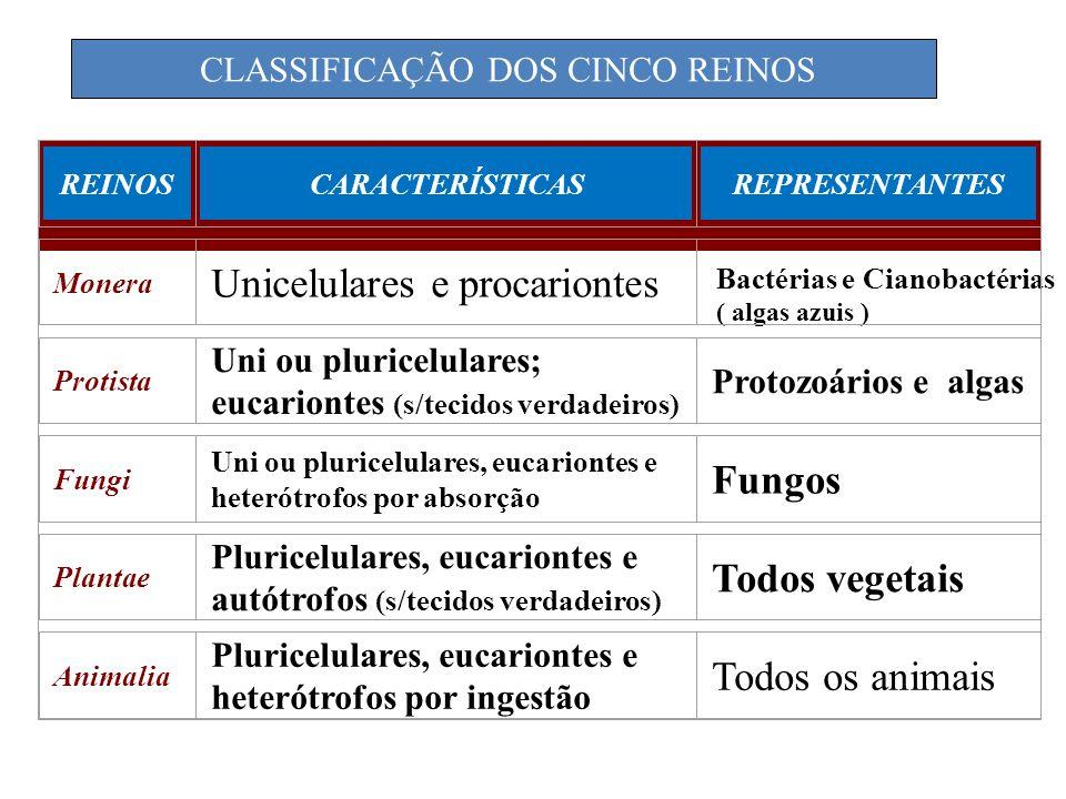 CLASSIFICAÇÃO DOS CINCO REINOS