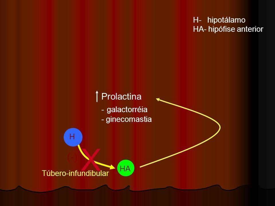 X (-) Prolactina H- hipotálamo HA- hipófise anterior - galactorréia