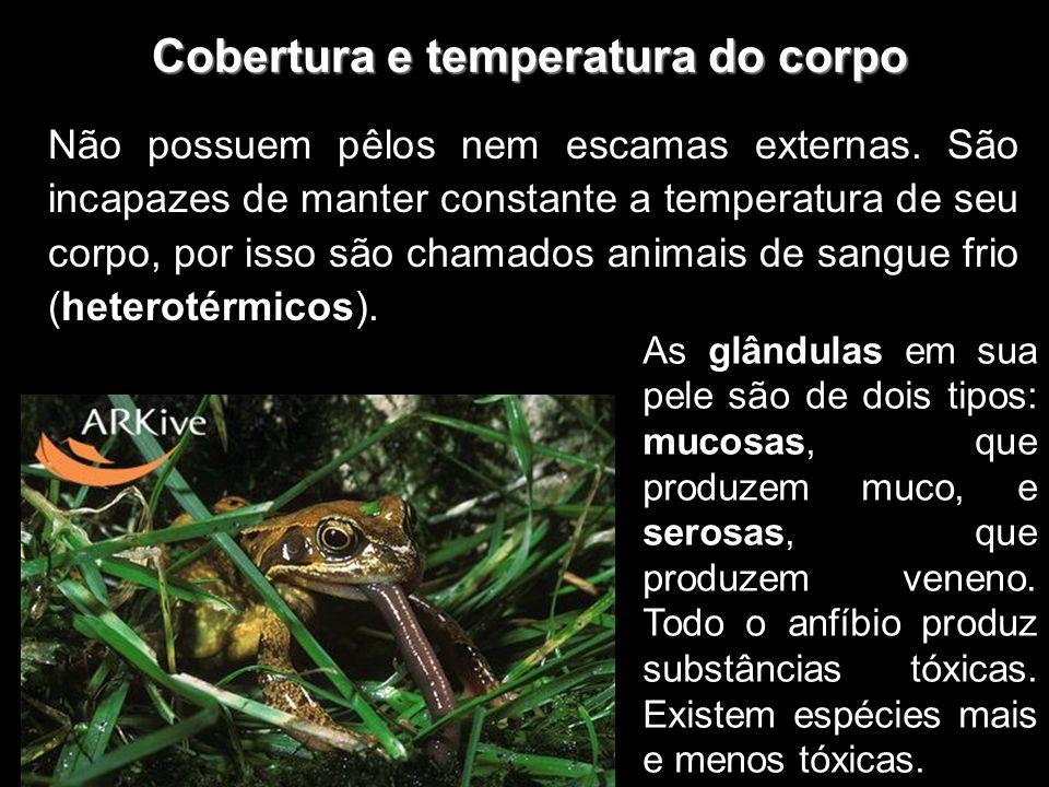 Cobertura e temperatura do corpo