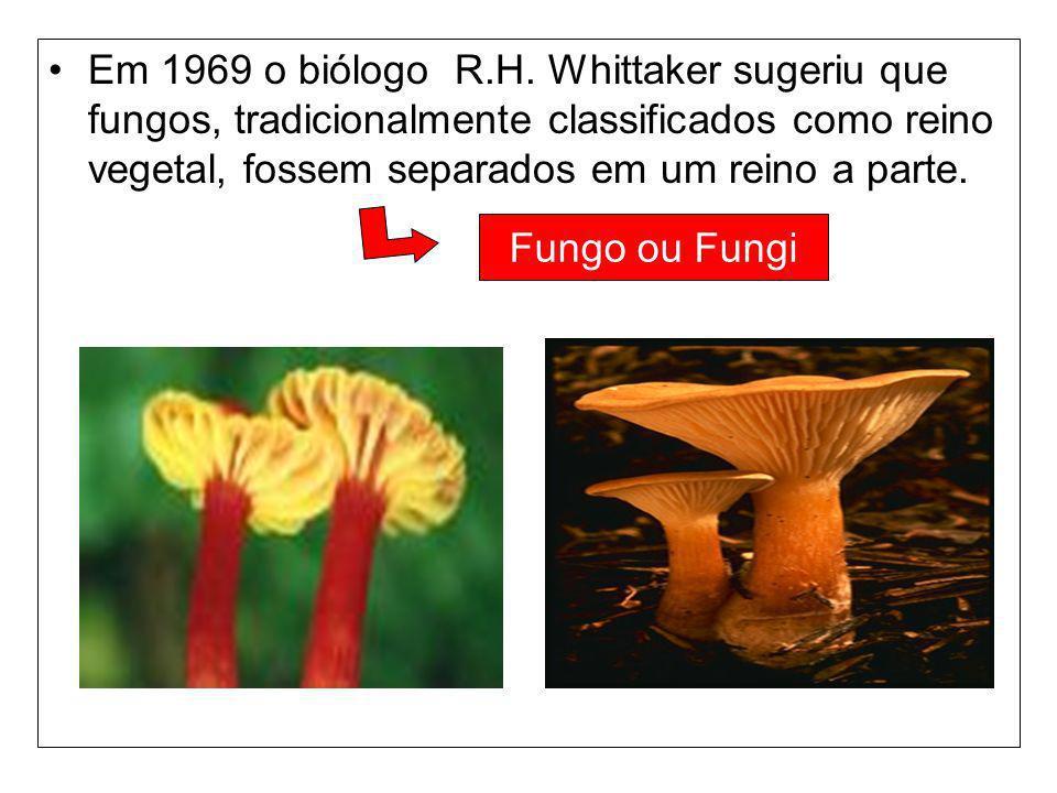 Em 1969 o biólogo R.H. Whittaker sugeriu que fungos, tradicionalmente classificados como reino vegetal, fossem separados em um reino a parte.