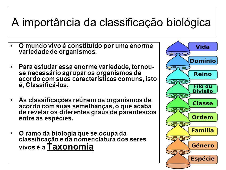 A importância da classificação biológica