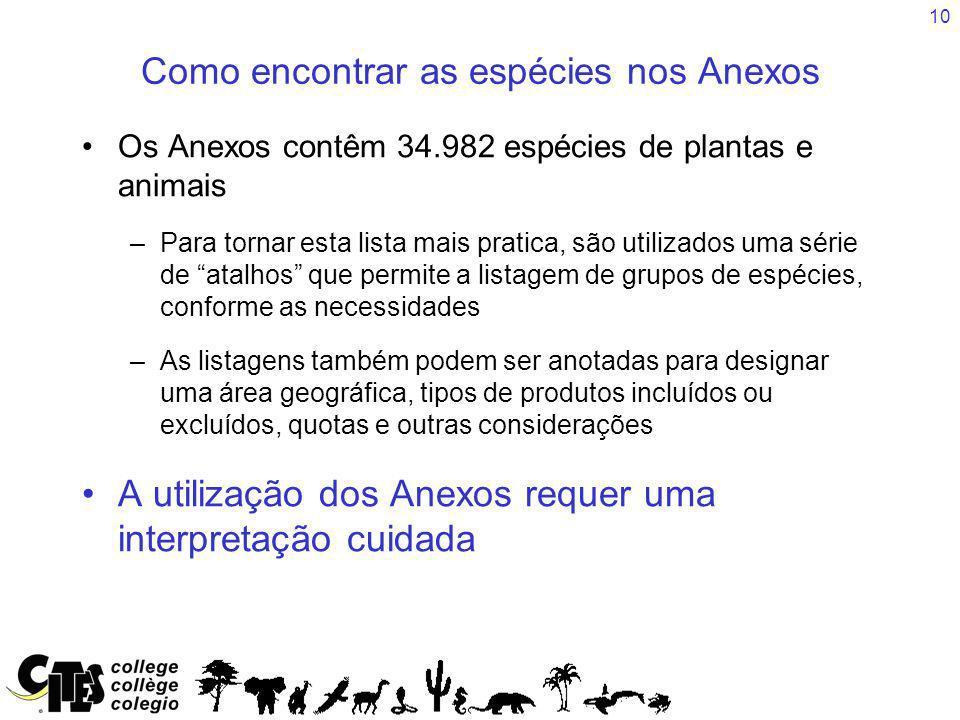 Como encontrar as espécies nos Anexos