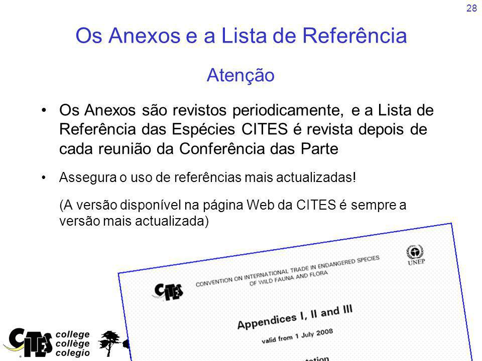 Os Anexos e a Lista de Referência