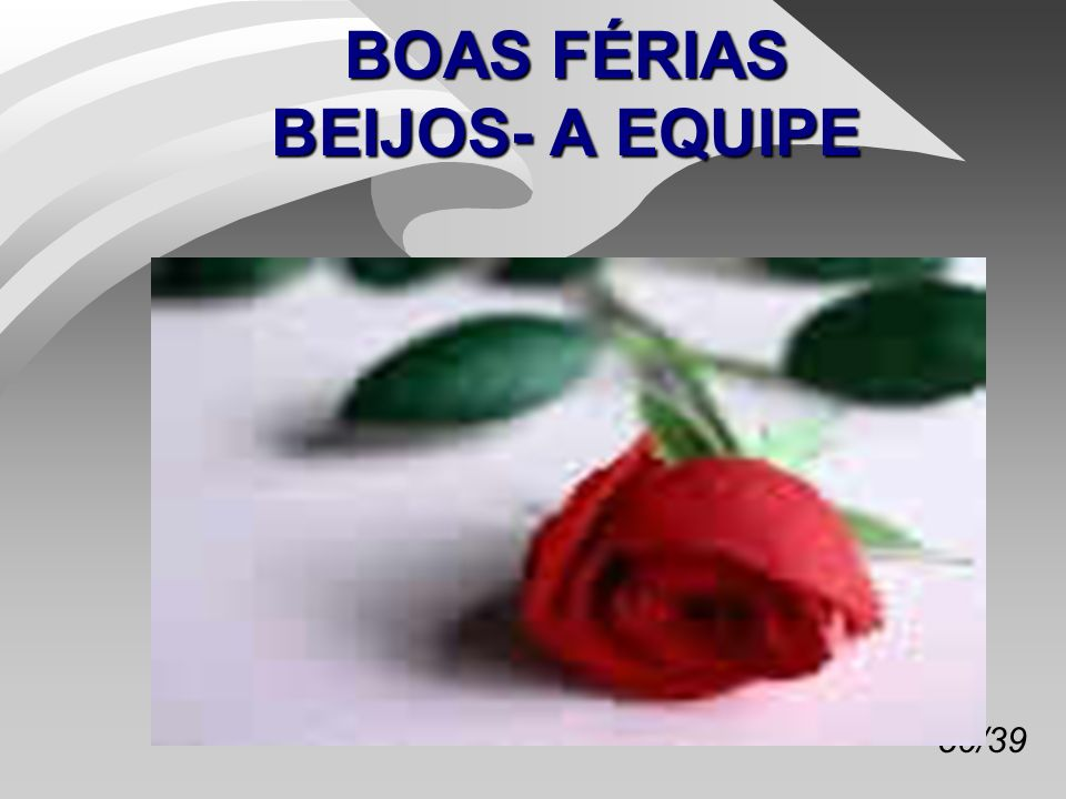 BOAS FÉRIAS BEIJOS- A EQUIPE