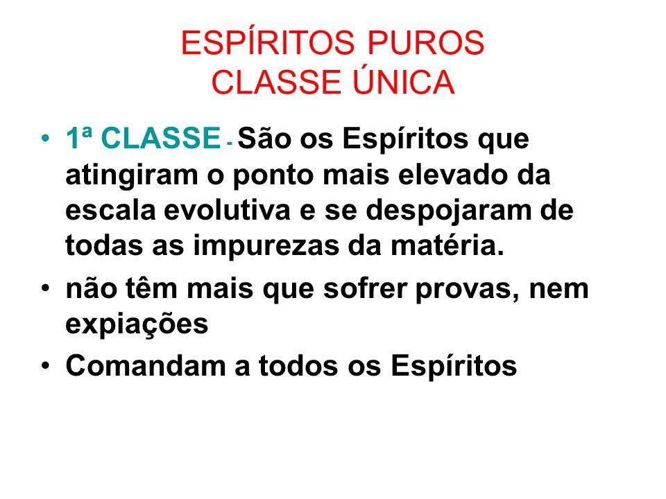 ESPÍRITOS PUROS CLASSE ÚNICA